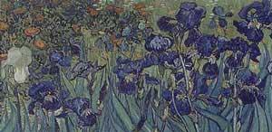 Irises (Detail) - Vincent Van Gogh
