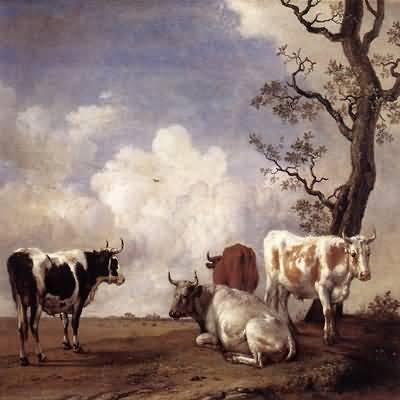 Paulus Potter The Bull