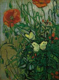 Butterflies and Poppies, St. Remy 1890 - Vincent Van Gogh