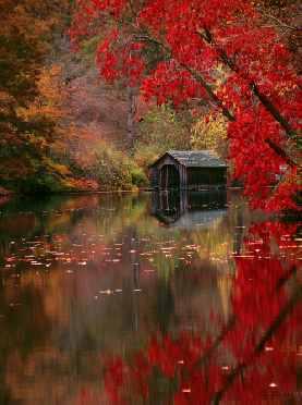 Autumn In Asheville North Carolina