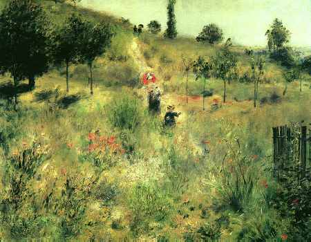 Path Winding Through High Grass
