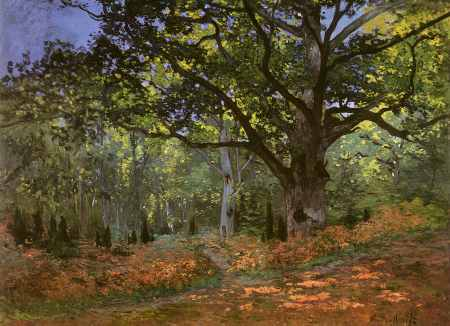 The Bodmer Oak, Forest of Fontainebleau