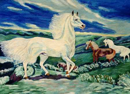 The Proud White Horse