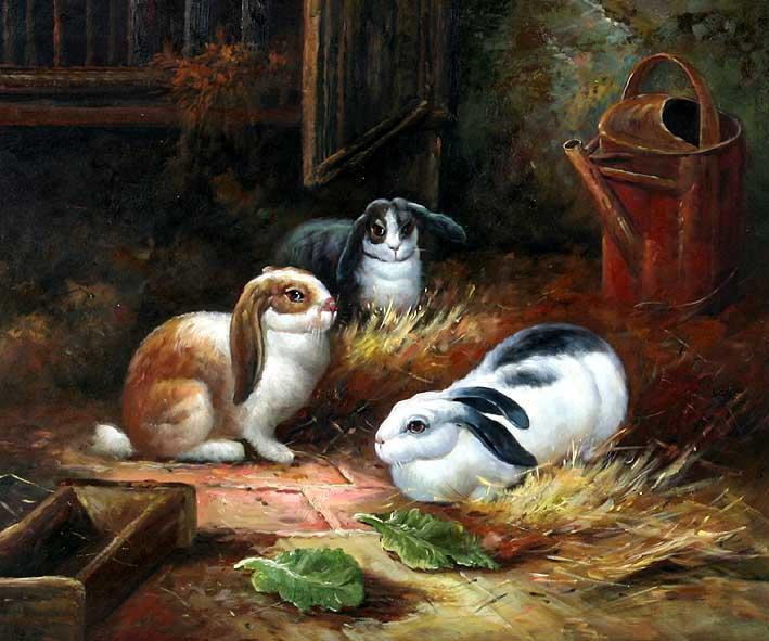 Rabbits at the Farm
