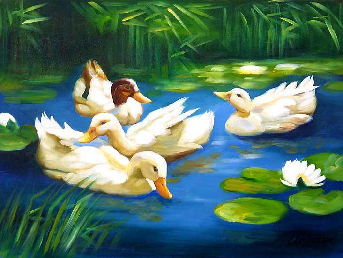 Pool Ducks