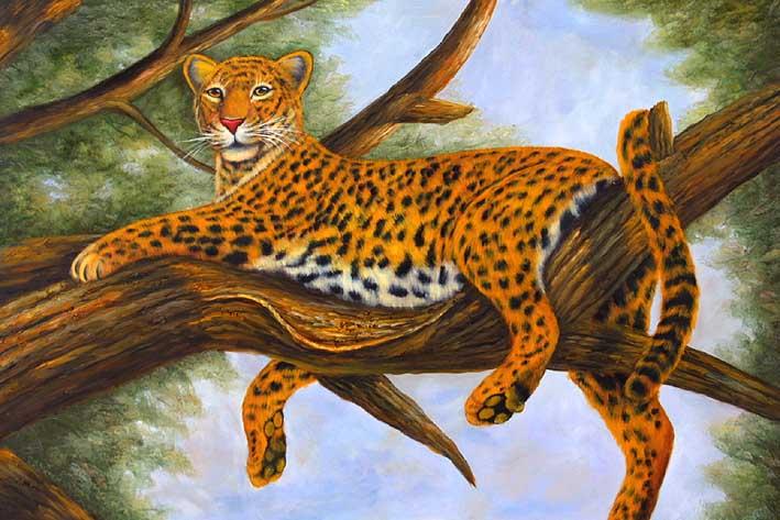 Lazying Leopard