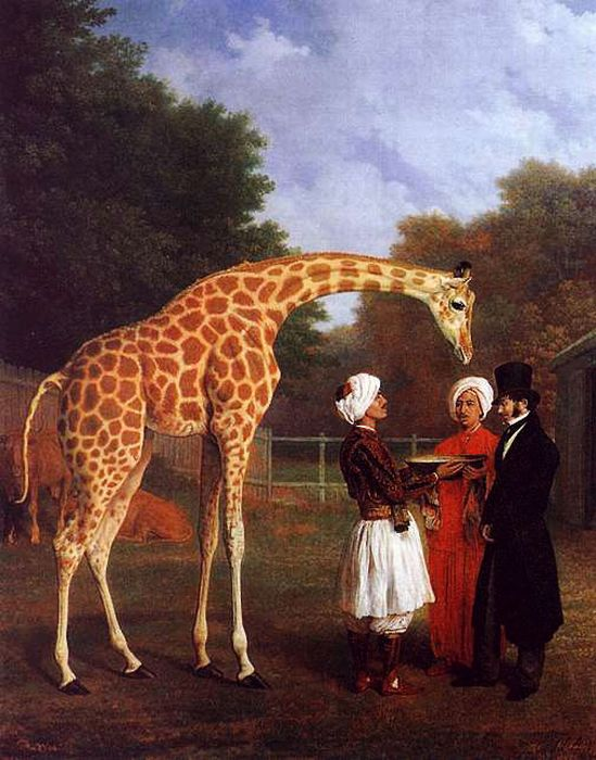 Agasse Reproductions - The Nubian Giraffe