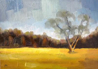 #146 Landscape Impression