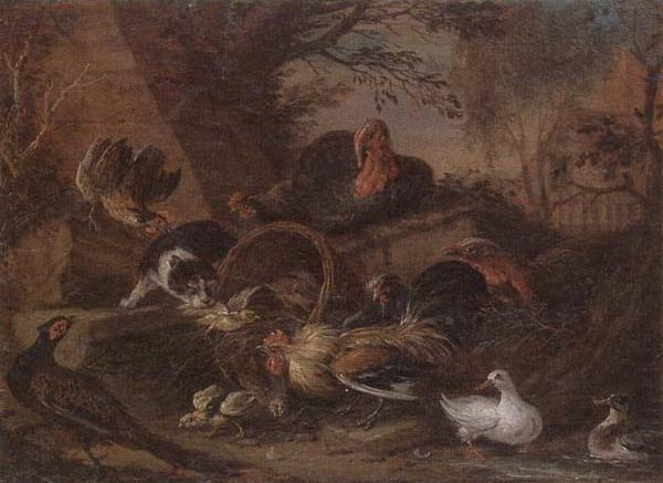 Still life of fowl in a farmyard,with a cat stealing a bantam chick