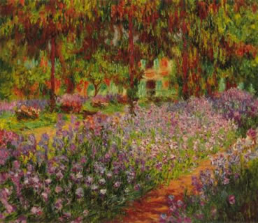 The Garden with colorful flowers