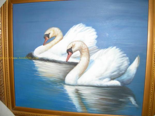 Beautiful swan Oil Painting