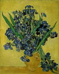Irises, St. Remy 5/1890 - Vincent Van Gogh