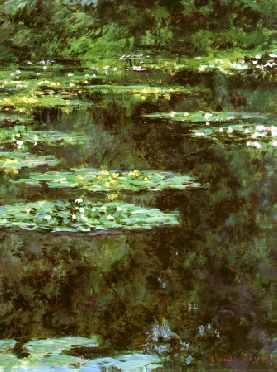 Water-Lilies 1904 (portrait detail)