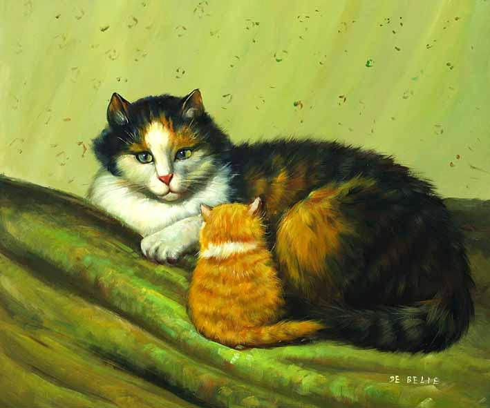 Cat Coziness