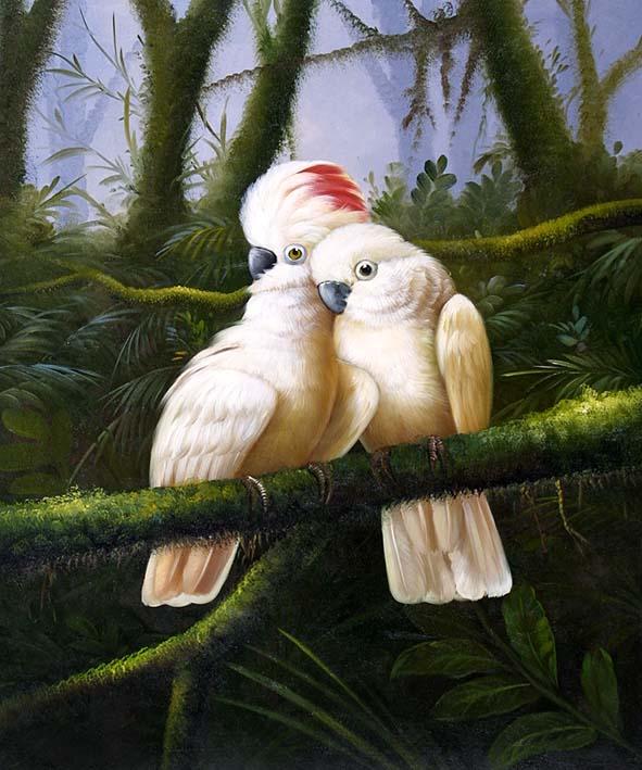 Cockatoos in Australian Jungle