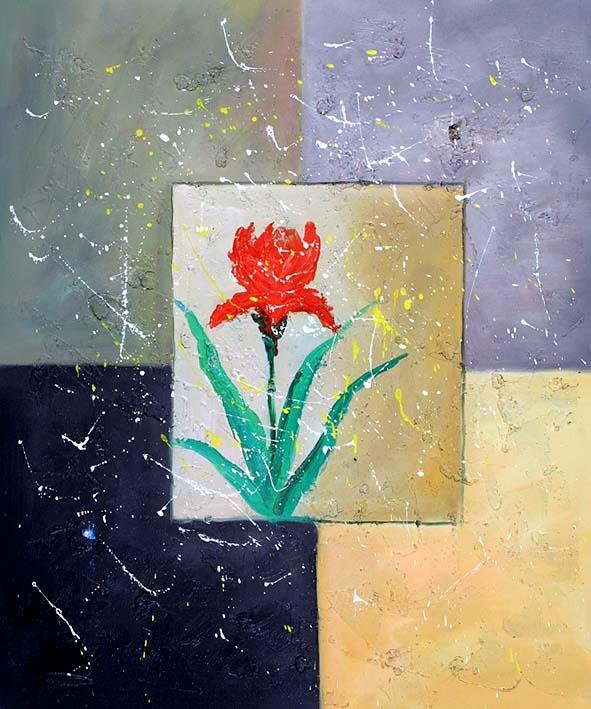 A Framed Flower