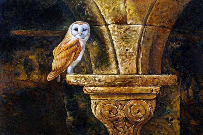 Church Owl