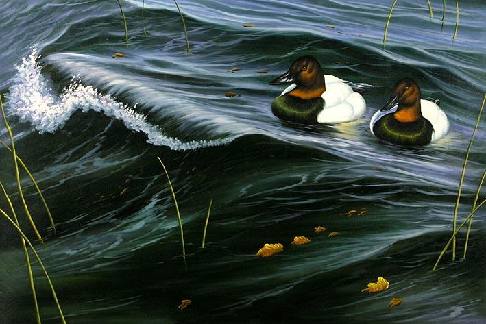 Drifting Ducks