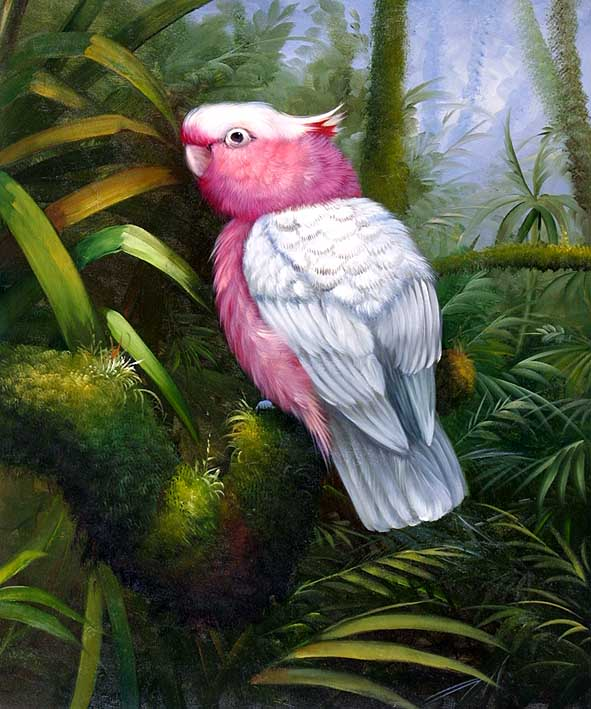 The Pink Parrot