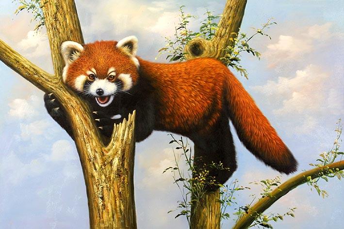 Red Panda in Tree, II