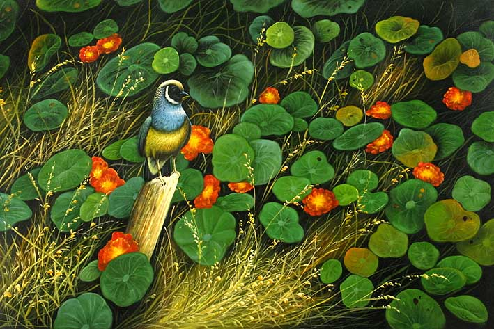 The Field Bird