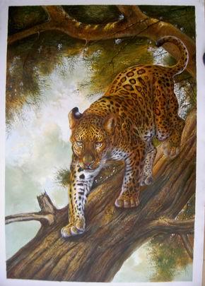 photograph artists prints Art Oil Painting Animal Animal oil painting