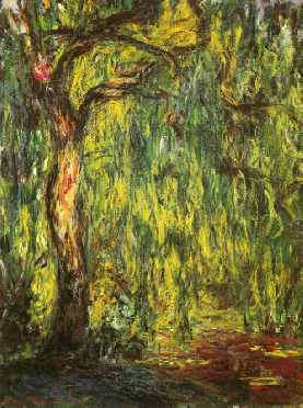 Landscape, Weeping Willow