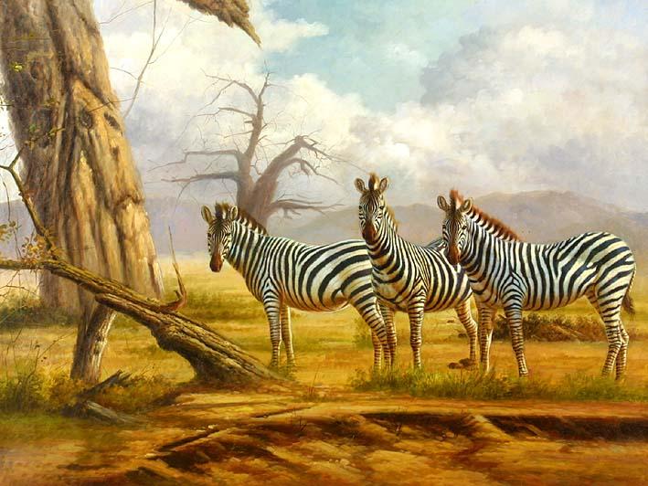 Zebra Siblings
